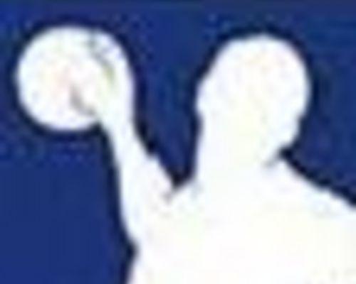 Handball Bundesliga Männer